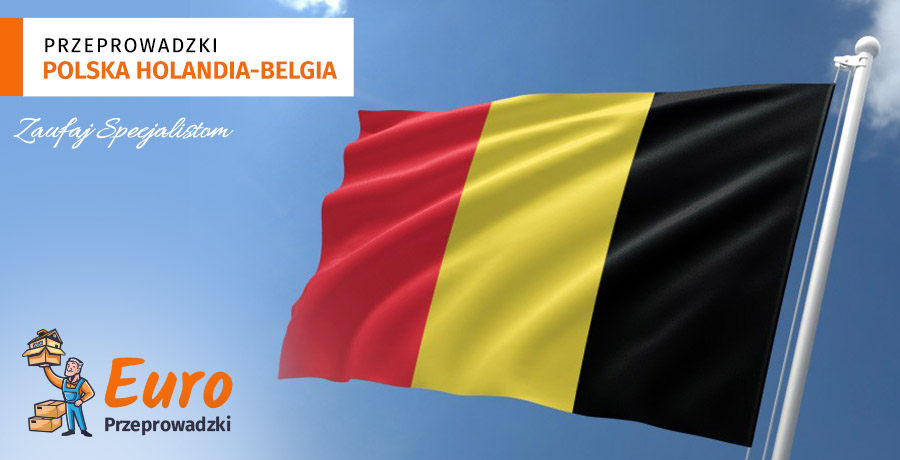 przeprowadzki polska belgia